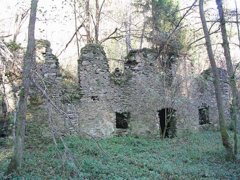 junguv-mlyn